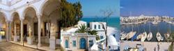 Excursion de decouverte par taxi touristique en tunisie